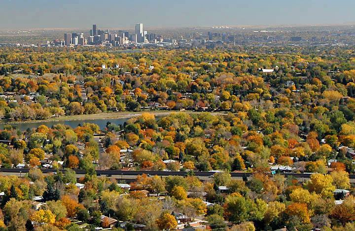 Denver Fall Color | Be A Smart Ash